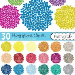 Peony flowers clipart