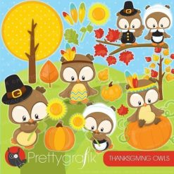 Thanksgiving owl clipart